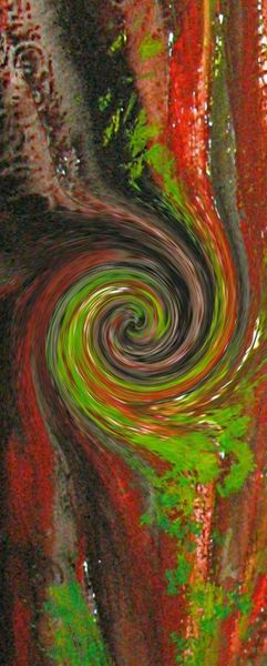 d-coupe-spirale--800x600-.jpg