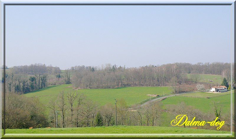 paysages-limousin--1-.JPG