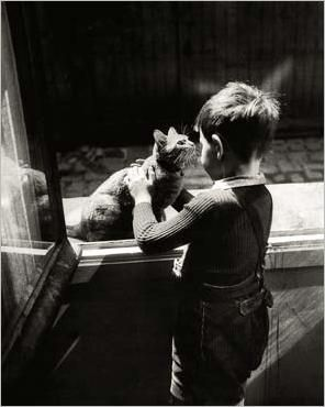 img_The-caretaker-s-Cat_Willy-RONIS_ref-PL168_mode-zoom.jpg