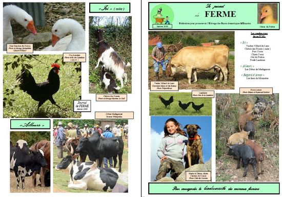 journal association FERME