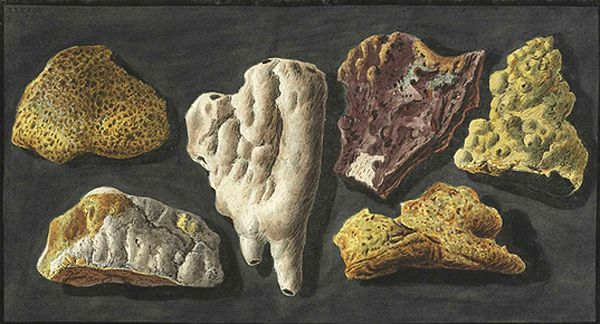 P.Fabris---specimens-from-the-crater-of-Mt-Vesuvius.jpg