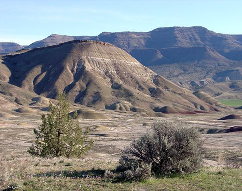 Painted Hills Overlook View of Carroll Rim (USGS)