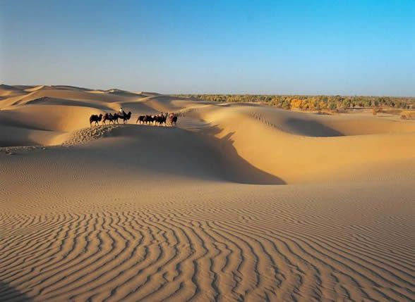 Taklamakan-desert---china-unique-tour.jpg