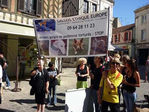 AUXERRE-anti-vivisection-marche-contre-mezilles.jpg