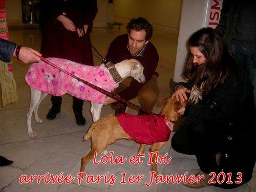 Lola-Ibi-arrivee-Paris-1er-janviert-2013