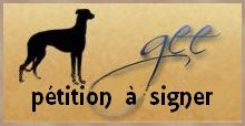 icone-petition-parlement-europeen-signer-galgos-ethique-eur