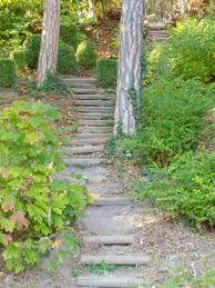 Escaliers-dans-le-parc-de-fourviere.jpg