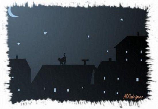 nocturne-2.jsigne.jpg