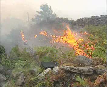 incendios-en-la-Amazonia-Foto-de-Mariana-Jaramillo-2-.jpg