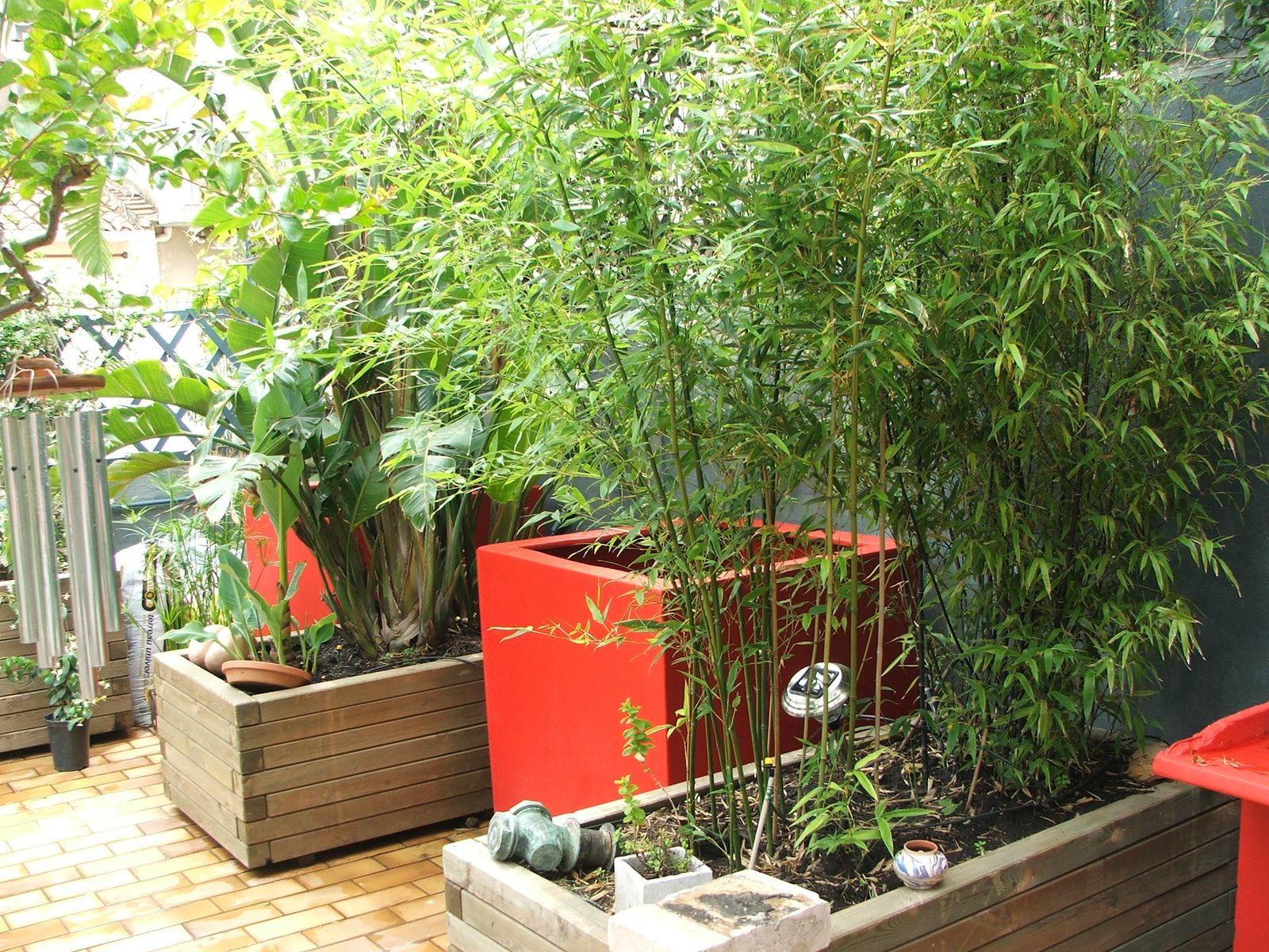 Ces jardins de ville agence arcambal concepteur paysagiste for Jardin 8686