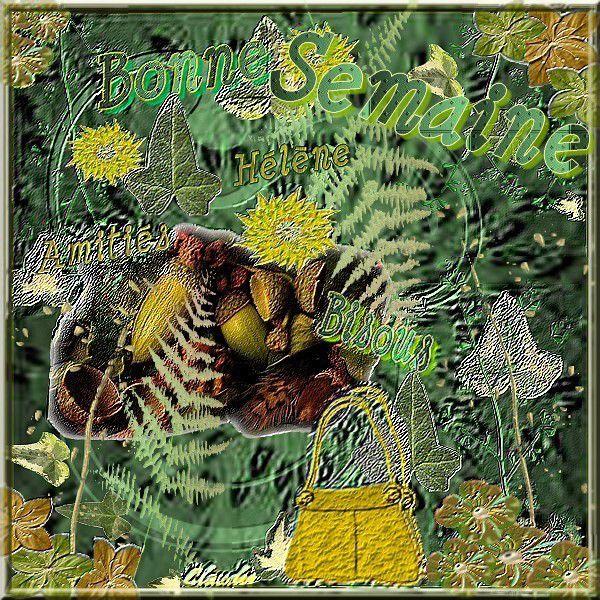 carte nature automne