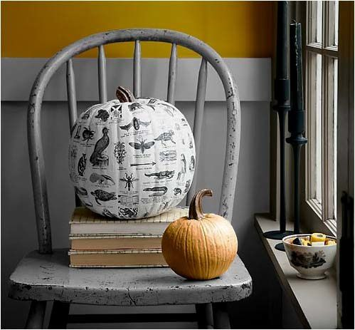 Social tradition halloween d coration citrouille le blog for Decoration citrouille