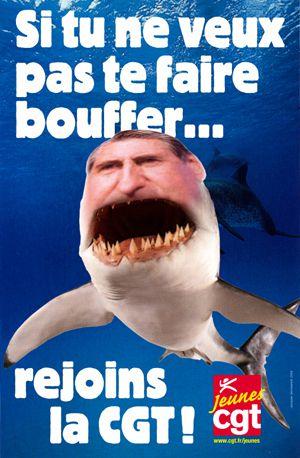 cgt-requin.jpg