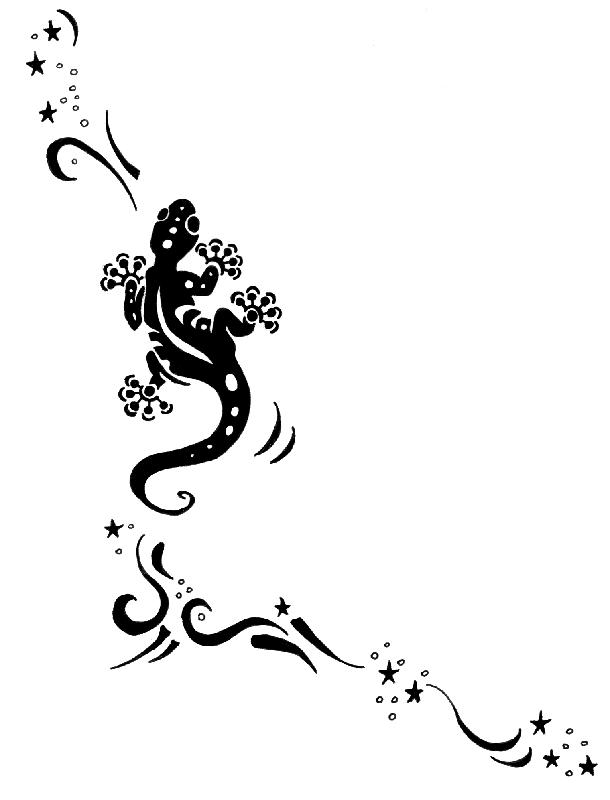 Dessin Salamandre salamandre dessin tatouage   tuer auf