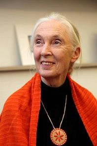 jane-goodale.jpg