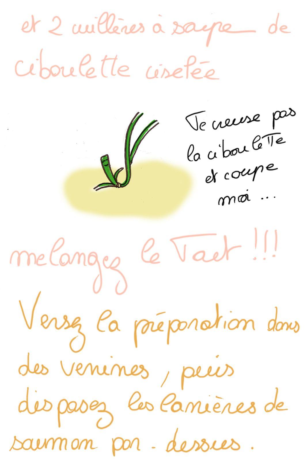 saumon-gribouille-3.jpg