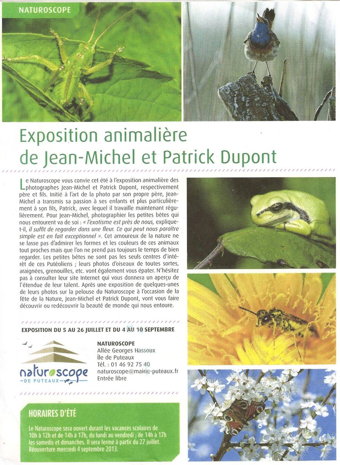 expo animalière-copie-1