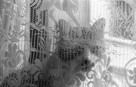 Surcouf-Août 1999-40
