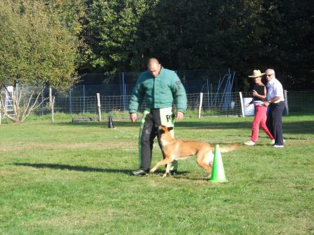 concours canin 004
