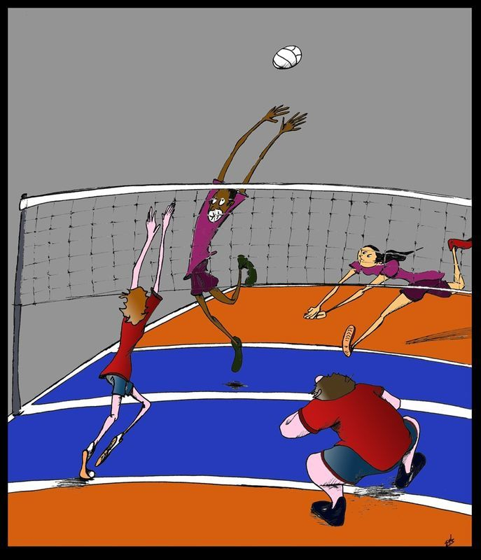volley2009_Couleur