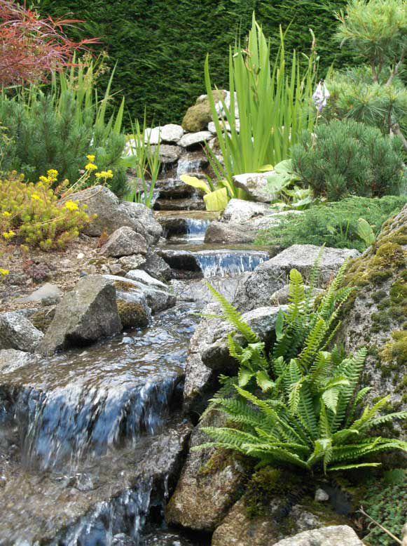 Céation autour de l\'eau - Création de jardins d\'inspiration japonaise