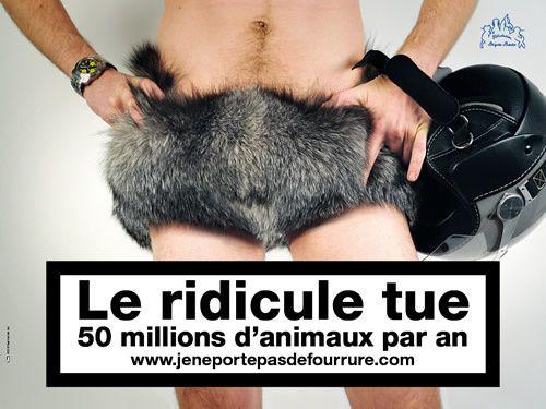 Campagne-2009-1.jpeg