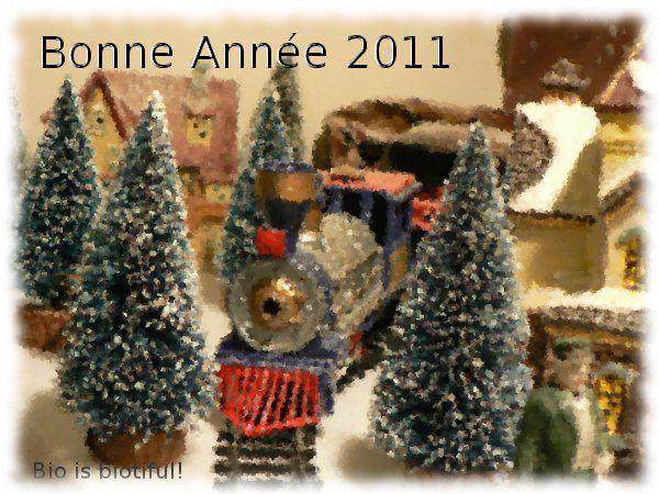 Bonne année 2011-2