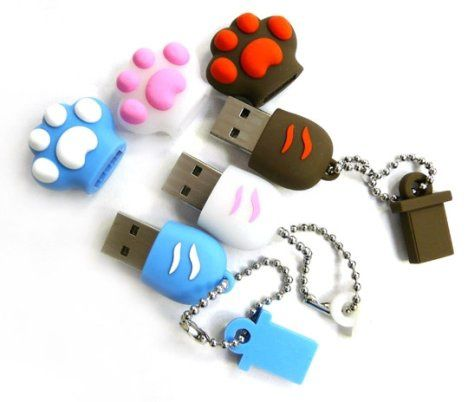 cle-usb-chat-patte.jpg