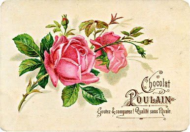 pink-roses-vintage-Image-GraphicsFairy004.png