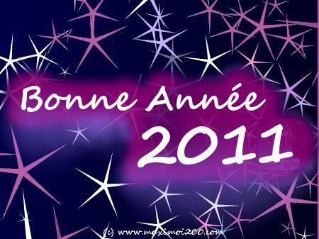bonne-annee-2011-copie-1.jpg