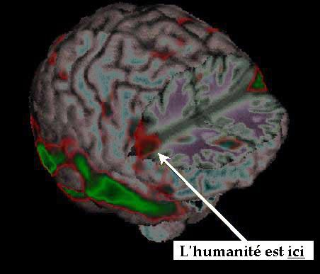 neurones_miroirs_humanite-1.jpg
