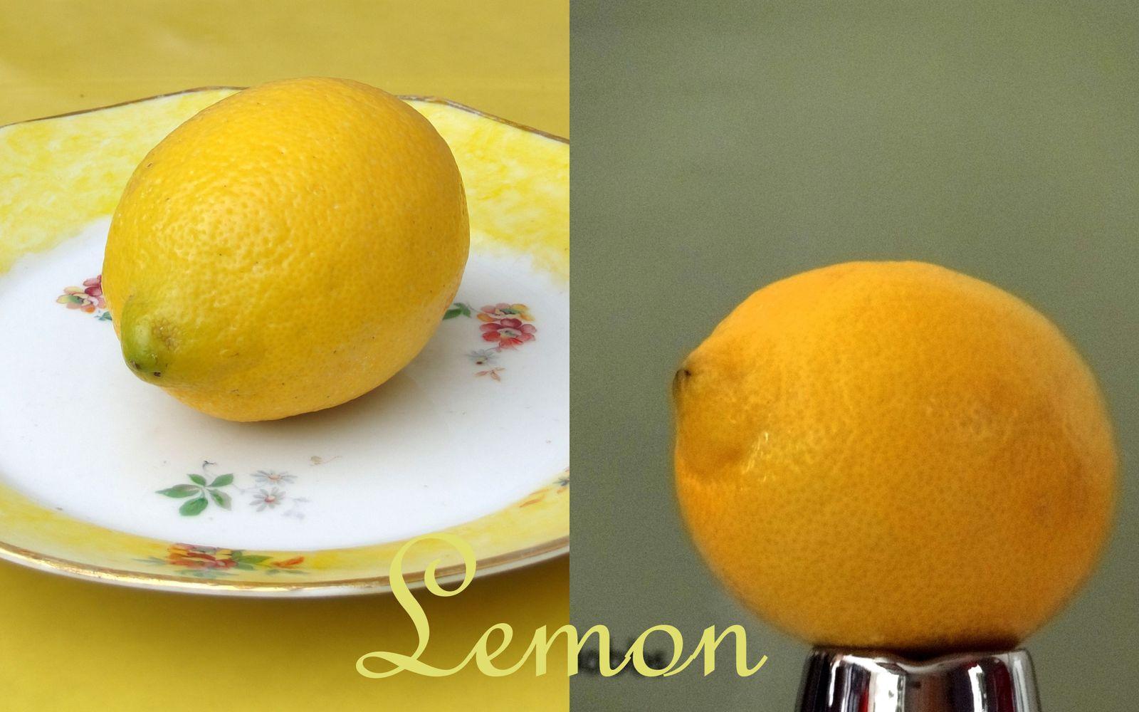 citrons Valérie Albertosi photo couleur