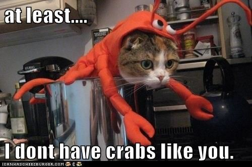 crabs at least