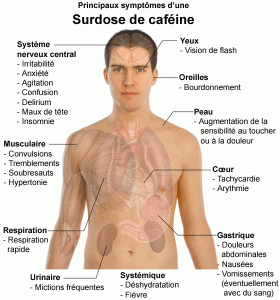 cafeine2.png