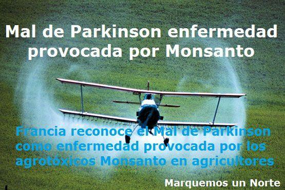 Mal-de-Parkinson-enfermedad-provocada-por-Monsanto.jpg