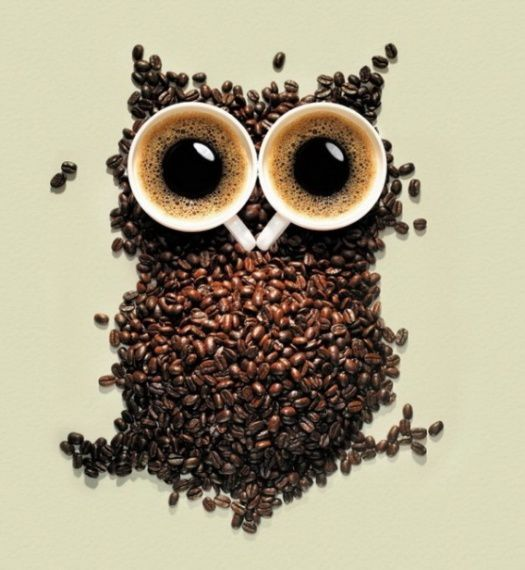cafe-hibou.jpg