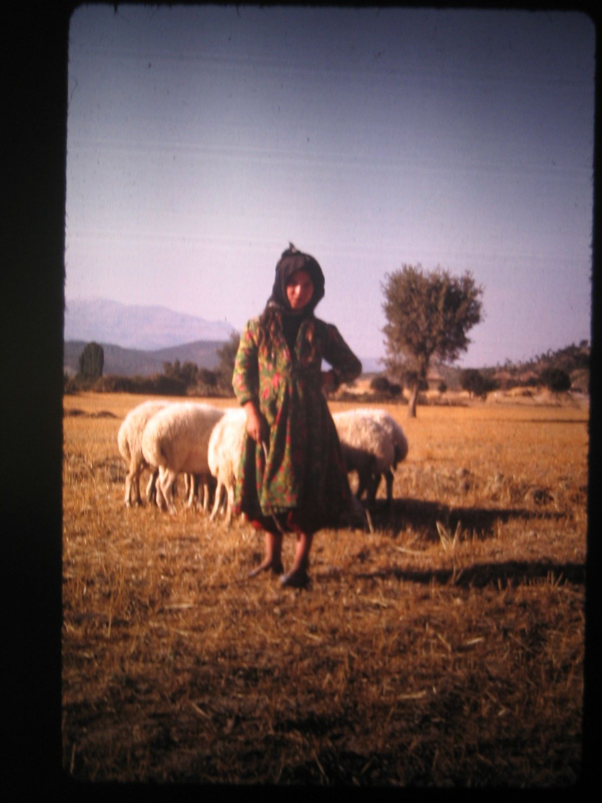 Turquie-aout-1970