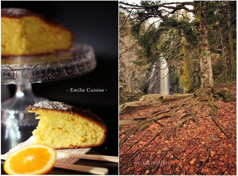gateau-orange-blog.jpg