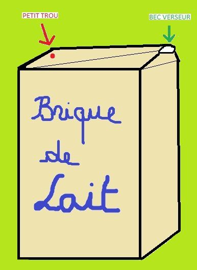 Brique-de-lait-copie-1.jpg