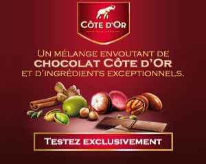 Chocolat-cote-d-or-test.jpeg