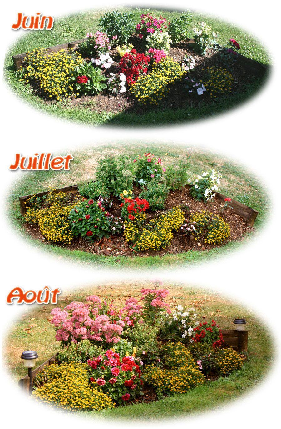 Fleurs jardin le blog de philippe - Massif fleuri toute l annee ...