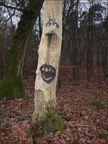 Street Art - art de rue in Natures Paul Keirn (2)