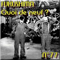 QDN N°77 - Fukushima nucléaire alternatives durables in p