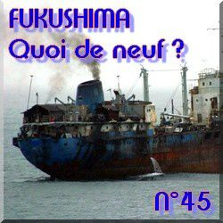 quoi-de-neuf-n--45-fukushima-kashiwazaki---natures-paul-ke.jpg