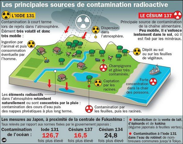 FUKUSHIMA - la contaminations radioactive continue - nature