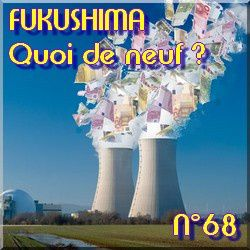 QDN-68-Fukushima-fin-nucleaire-allemagne---natures-paul-kei.jpg