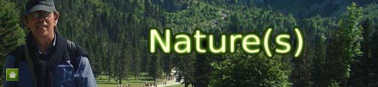 Header-natures-paul-keirn-accueil.jpg