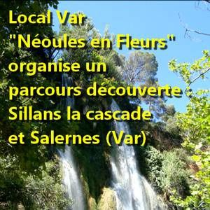 nature-s-paul-keirn-local-neoules-en-fleurs.jpg