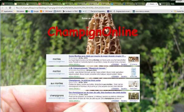 jpeg-morilles-news-live-in-natures-paul-keirn.jpg