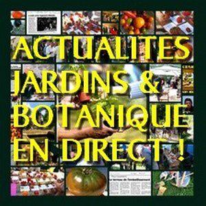 NEF---300px---actualites-news-info-jardins-botanique-cultu.jpg
